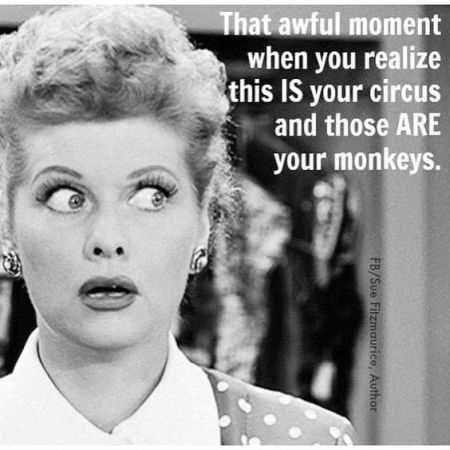 Lucy-monkey