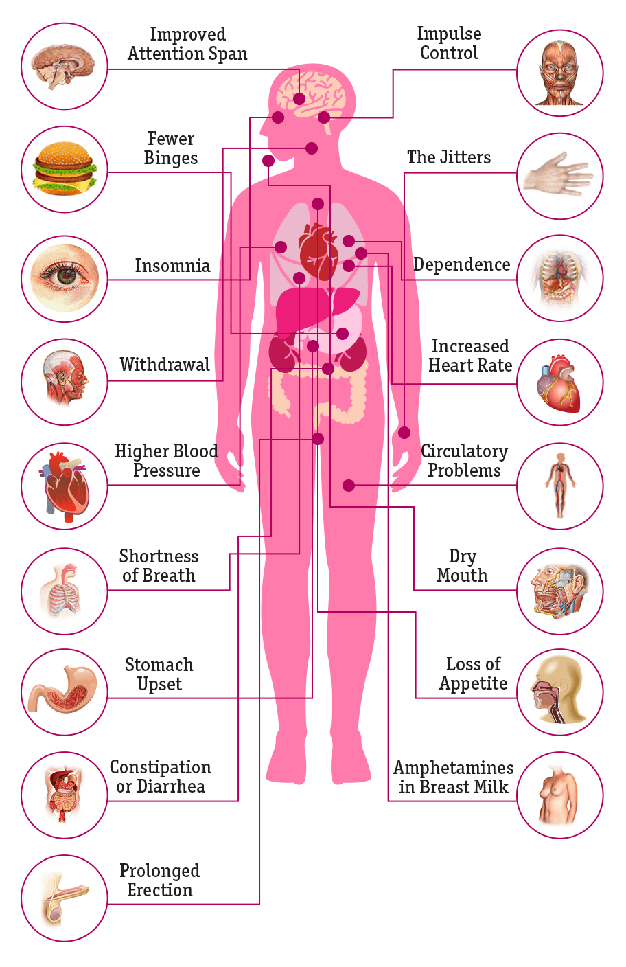Vyvanse-Effects_Infographic_Interactive_crop